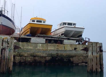 snapper charters in the boat yard
