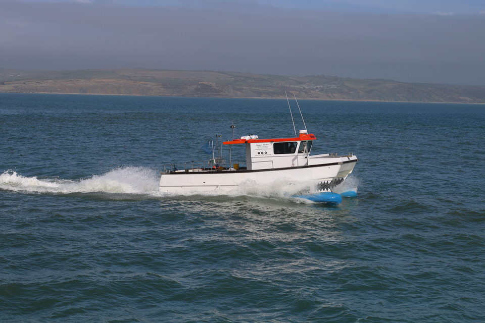 Snapper Charters fishing trips from Weymouth harbour