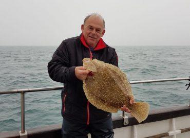 brill fishing on snapper charters inshore fishing trip flat fish