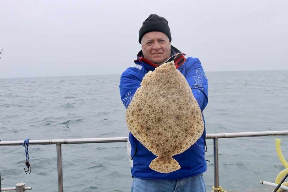 turbot fishing in alderney