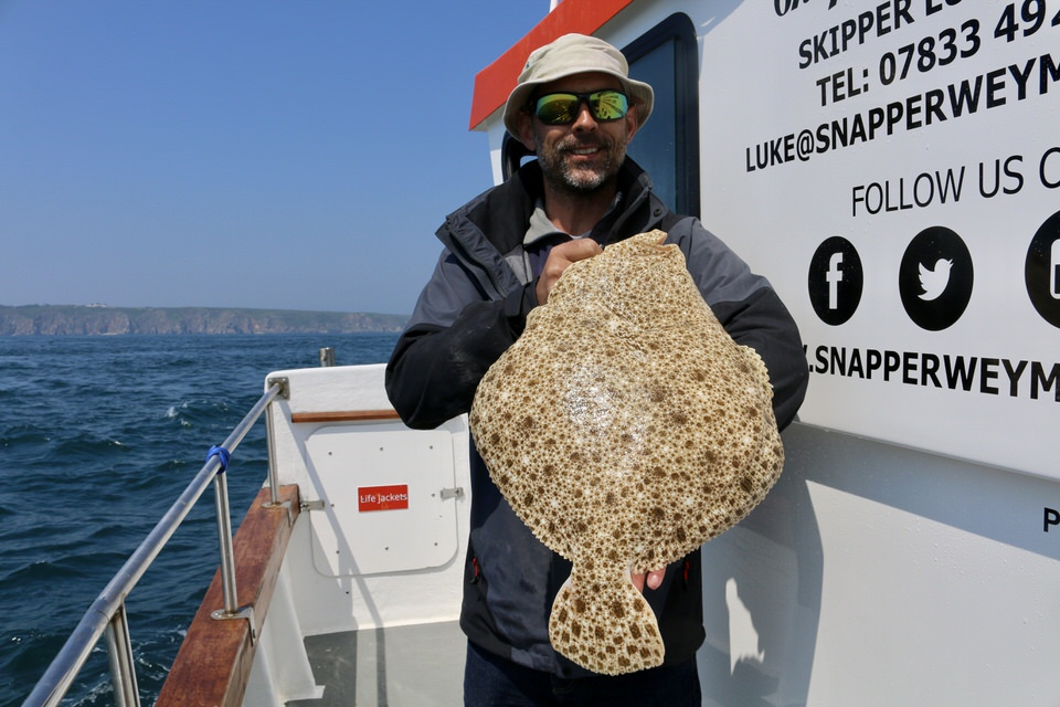 turbot landed during alderney fishing trip