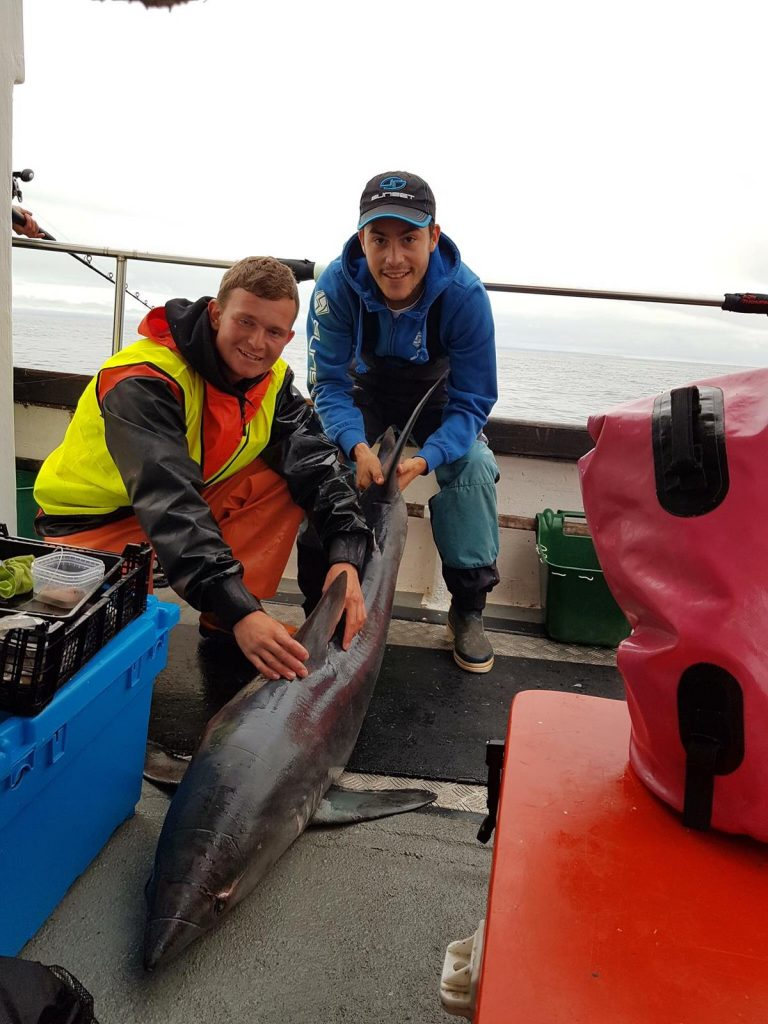 porbeagle landed during wibac 2018