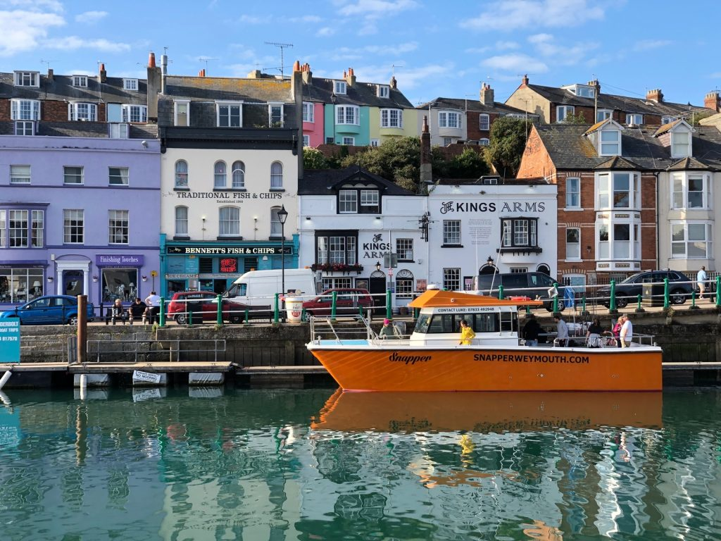 snapper in weymouth harbour